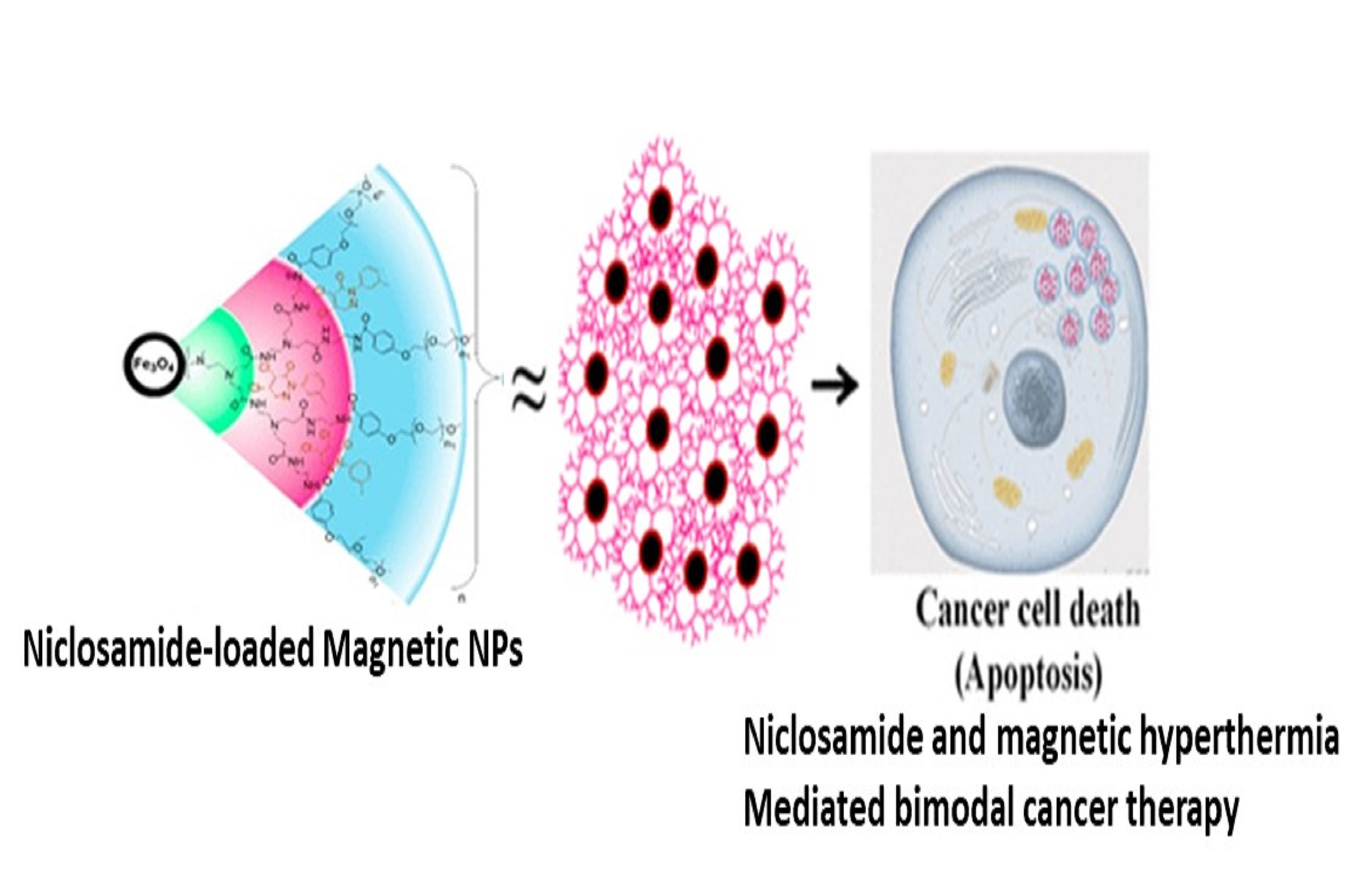 Nanomaterials for Cancer Therapy
